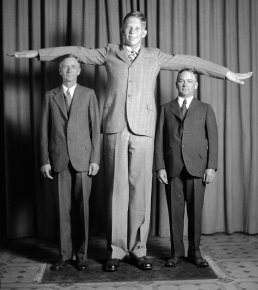Image result for robert wadlow